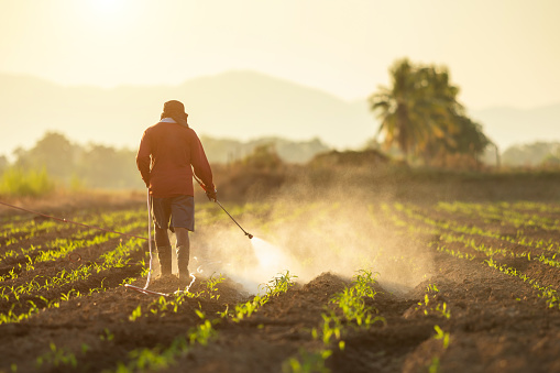 Farmer spraying a field with weed killer